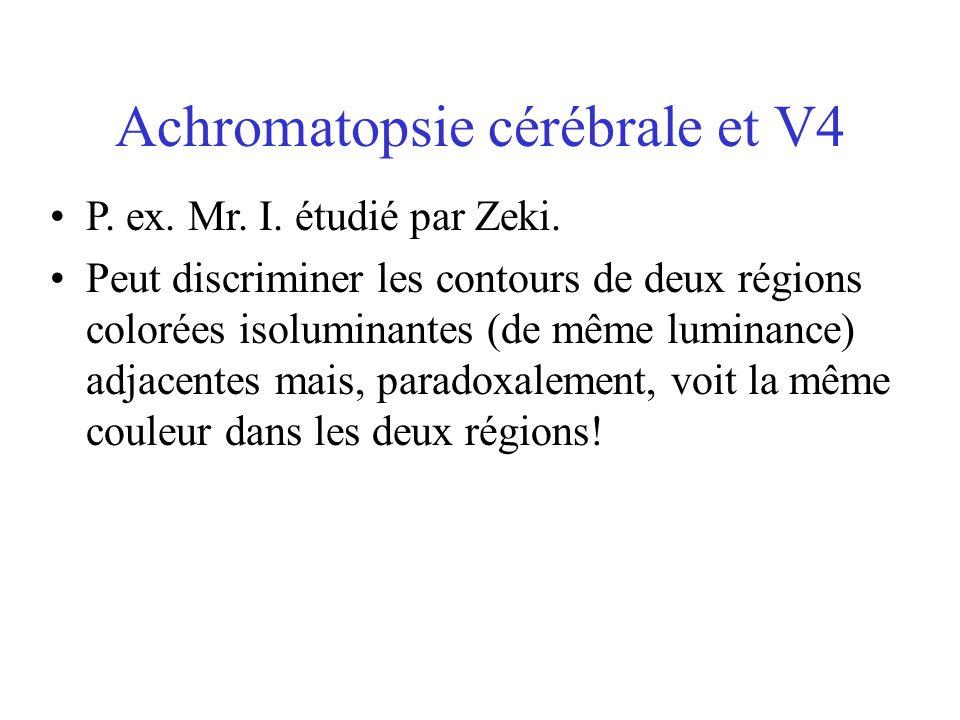 Achromatopsie cérébrale et V4 •P. ex. Mr. I. étudié par Zeki. •Peut discriminer les contours de deux régions colorées isoluminantes (de même luminance