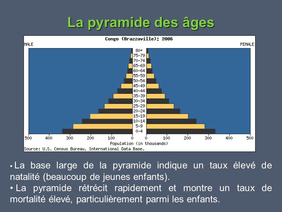 La pyramide des âges • La base large de la pyramide indique un taux élevé de natalité (beaucoup de jeunes enfants). • La pyramide rétrécit rapidement