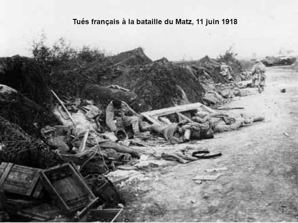 •« L'autre jour, raconte un soldat français. Un veau était venu de l'arrière se promener près de nos tranchées. Avec un camarade, je me mets à sa pour