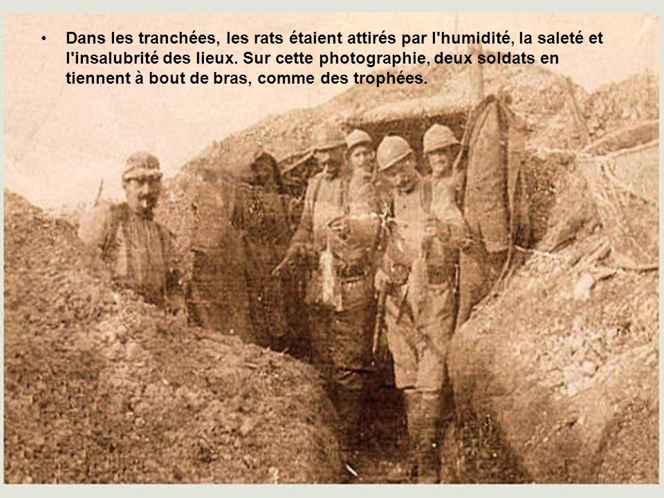 •En 1915, la guerre de position est solidement installée, et aucune modification stratégique marquante ne bouleversera les acquis. Ici, des soldats fo