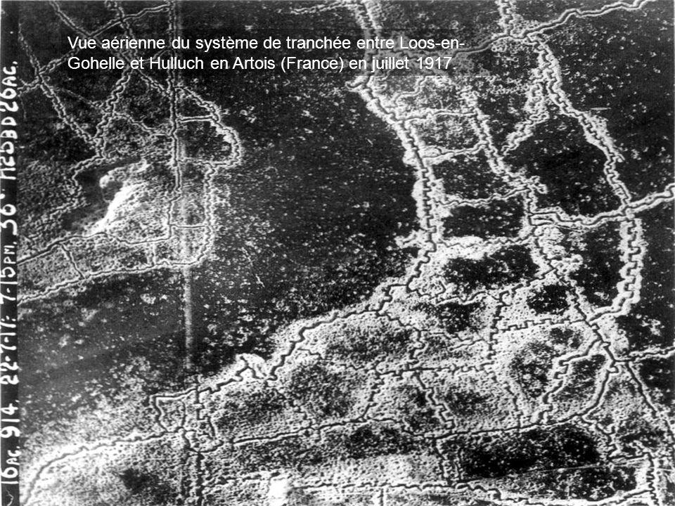 •Il ne faut pas perdre de vue, en effet, que la tranchée prolonge à l'infini, de la mer du Nord jusqu'en Alsace, ses méandres imperceptibles, qu'elle