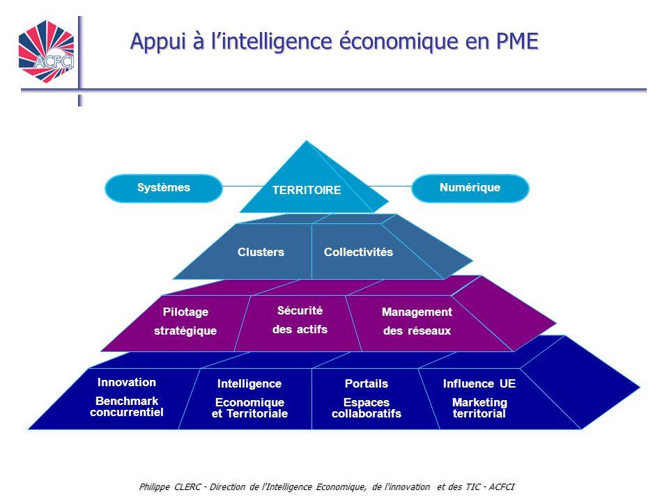Appui à l'intelligence économique en PME Philippe CLERC - Direction de l'Intelligence Economique, de l'innovation et des TIC - ACFCI Pilotage stratégi