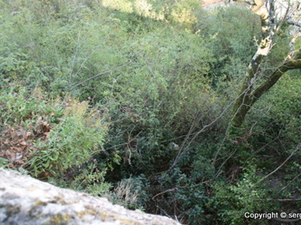 Les jardin de l eden •Monteur réalisateur serge •Photos personnelle •Prise au jardin de l,eden a Tournon sur rhone •Musique :zenzille-mind over matter