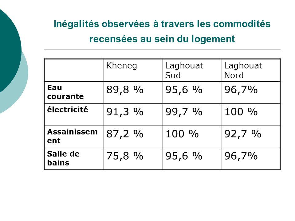 Inégalités observées à travers les commodités recensées au sein du logement KhenegLaghouat Sud Laghouat Nord Eau courante 89,8 %95,6 %96,7% électricité 91,3 %99,7 %100 % Assainissem ent 87,2 %100 %92,7 % Salle de bains 75,8 %95,6 %96,7%
