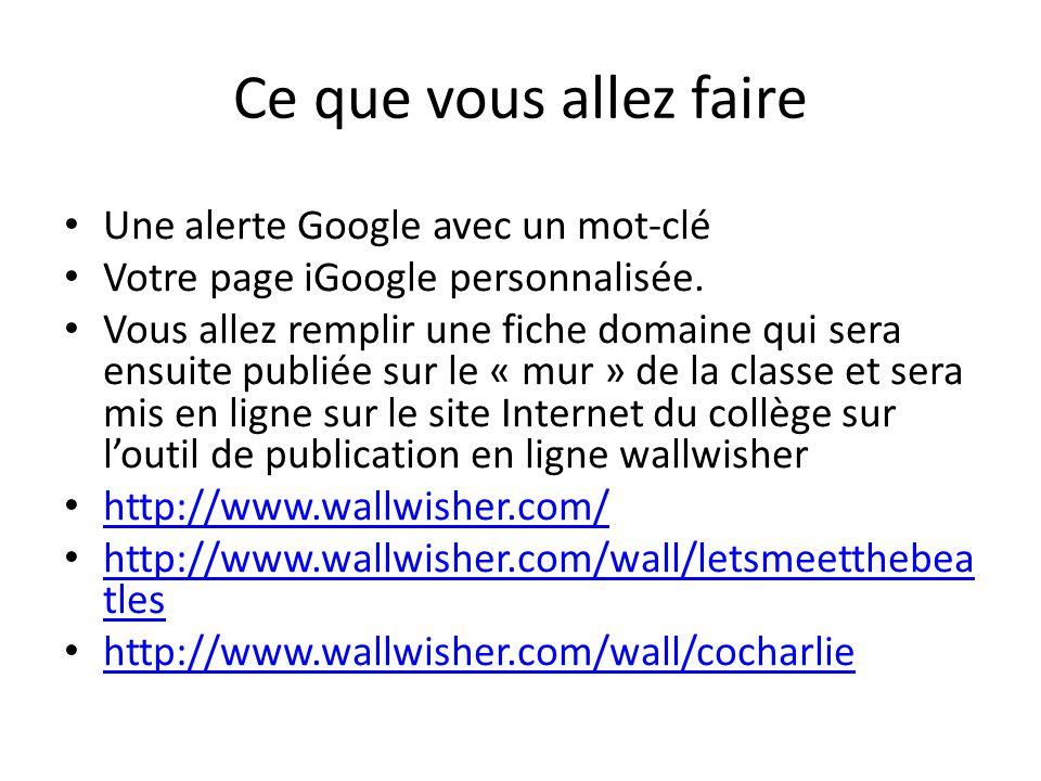 Ce que vous allez faire • Une alerte Google avec un mot-clé • Votre page iGoogle personnalisée. • Vous allez remplir une fiche domaine qui sera ensuit