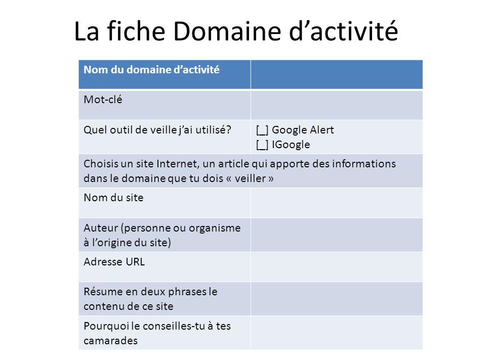 La fiche Domaine d'activité Nom du domaine d'activité Mot-clé Quel outil de veille j'ai utilisé?[_] Google Alert [_] IGoogle Choisis un site Internet,