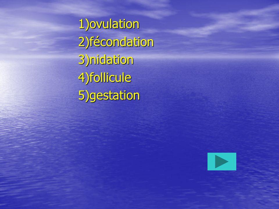 1)ovulation2)fécondation3)nidation4)follicule5)gestation