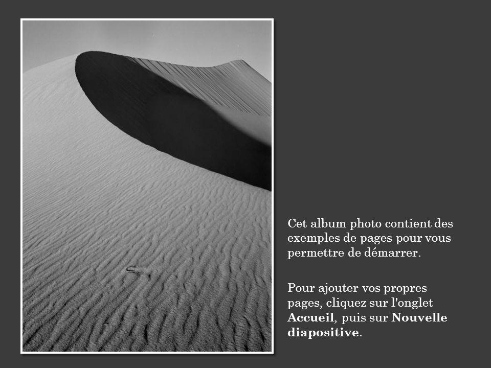 Cet album photo contient des exemples de pages pour vous permettre de démarrer. Pour ajouter vos propres pages, cliquez sur l'onglet Accueil, puis sur