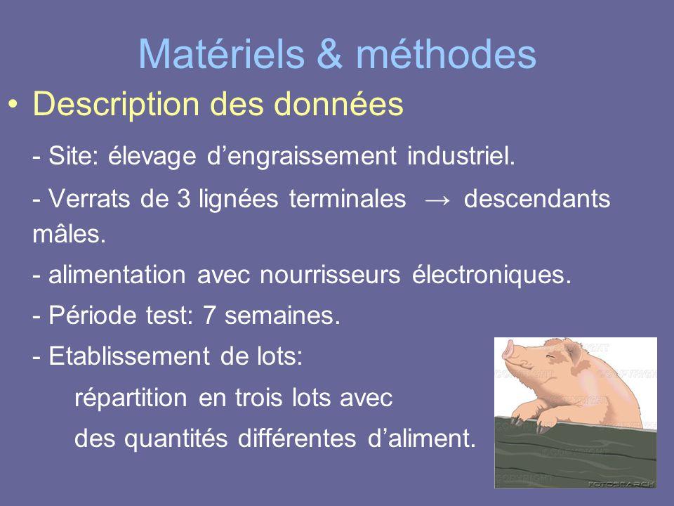 Matériels & méthodes •Description des données - Site: élevage d'engraissement industriel. - Verrats de 3 lignées terminales → descendants mâles. - ali