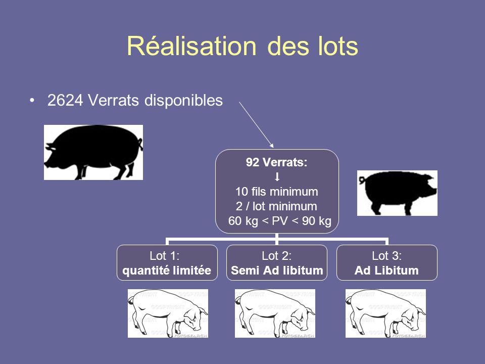 Réalisation des lots •2624 Verrats disponibles 92 Verrats:  10 fils minimum 2 / lot minimum 60 kg < PV < 90 kg Lot 1: quantité limitée Lot 2: Semi Ad libitum Lot 3: Ad Libitum