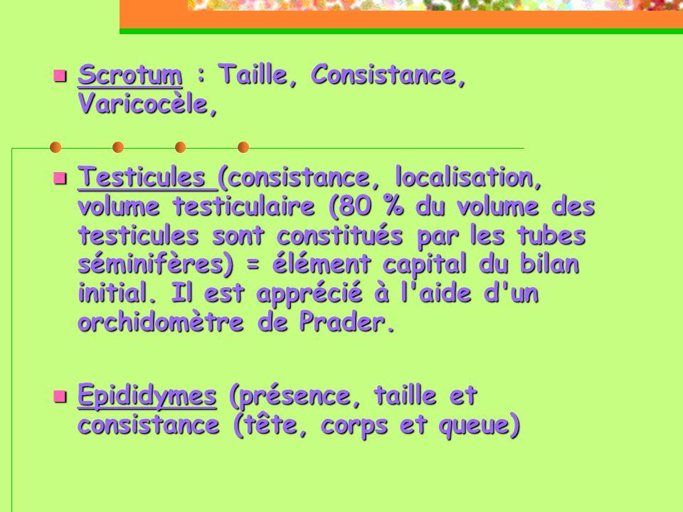  Scrotum : Taille, Consistance, Varicocèle,  Testicules (consistance, localisation, volume testiculaire (80 % du volume des testicules sont constitués par les tubes séminifères) = élément capital du bilan initial.