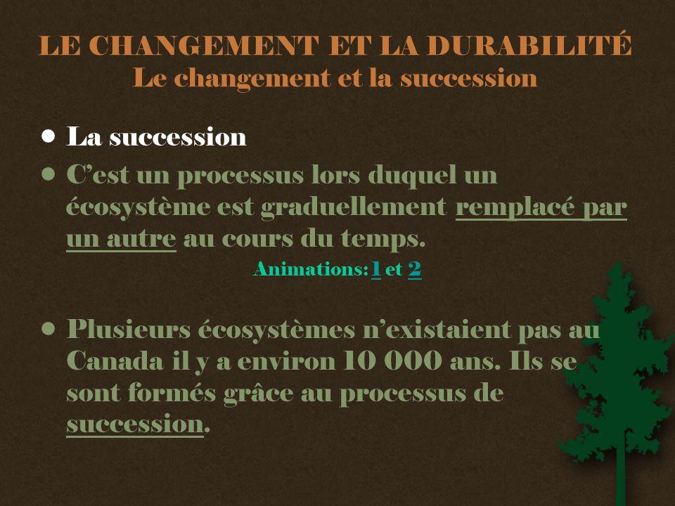 LE CHANGEMENT ET LA DURABILITÉ Le changement et la succession •La succession •C'est un processus lors duquel un écosystème est graduellement remplacé par un autre au cours du temps.