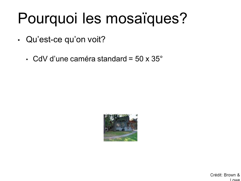 Pourquoi les mosaïques? • Qu'est-ce qu'on voit? • CdV d'une caméra standard = 50 x 35° Crédit: Brown & Lowe