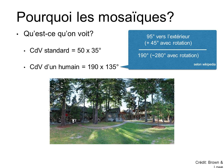 Pourquoi les mosaïques? Crédit: Brown & Lowe • Qu'est-ce qu'on voit? • CdV standard = 50 x 35° • CdV d'un humain = 190 x 135° 95° vers l'extérieur (+
