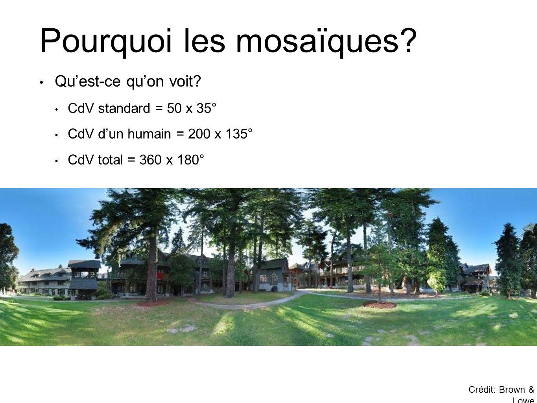 Pourquoi les mosaïques? Crédit: Brown & Lowe • Qu'est-ce qu'on voit? • CdV standard = 50 x 35° • CdV d'un humain = 200 x 135° • CdV total = 360 x 180°