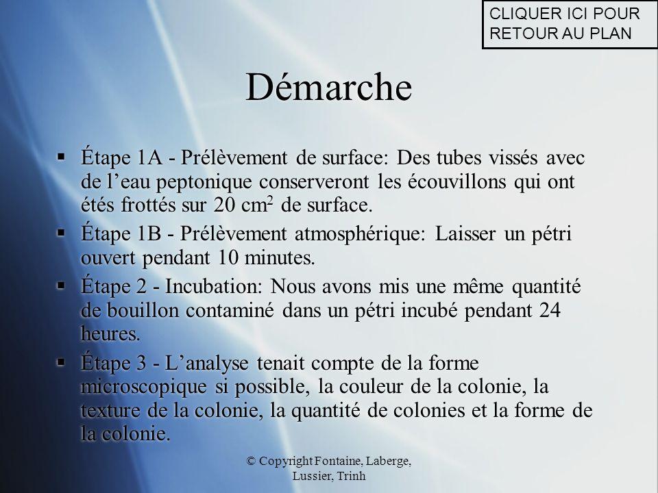 © Copyright Fontaine, Laberge, Lussier, Trinh Démarche  Étape 1A - Prélèvement de surface: Des tubes vissés avec de l'eau peptonique conserveront les