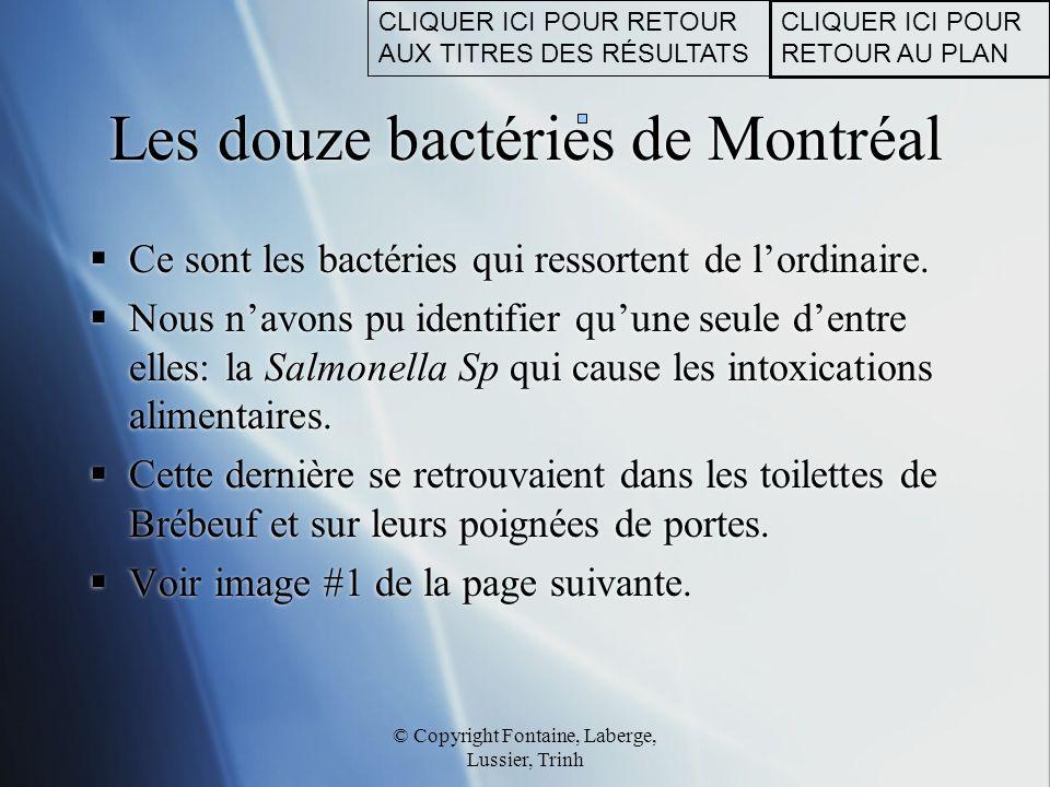 © Copyright Fontaine, Laberge, Lussier, Trinh Photo des douze bactéries de Montréal CLIQUER ICI POUR RETOUR AU PLAN CLIQUER ICI POUR RETOUR AUX TITRES DES RÉSULTATS