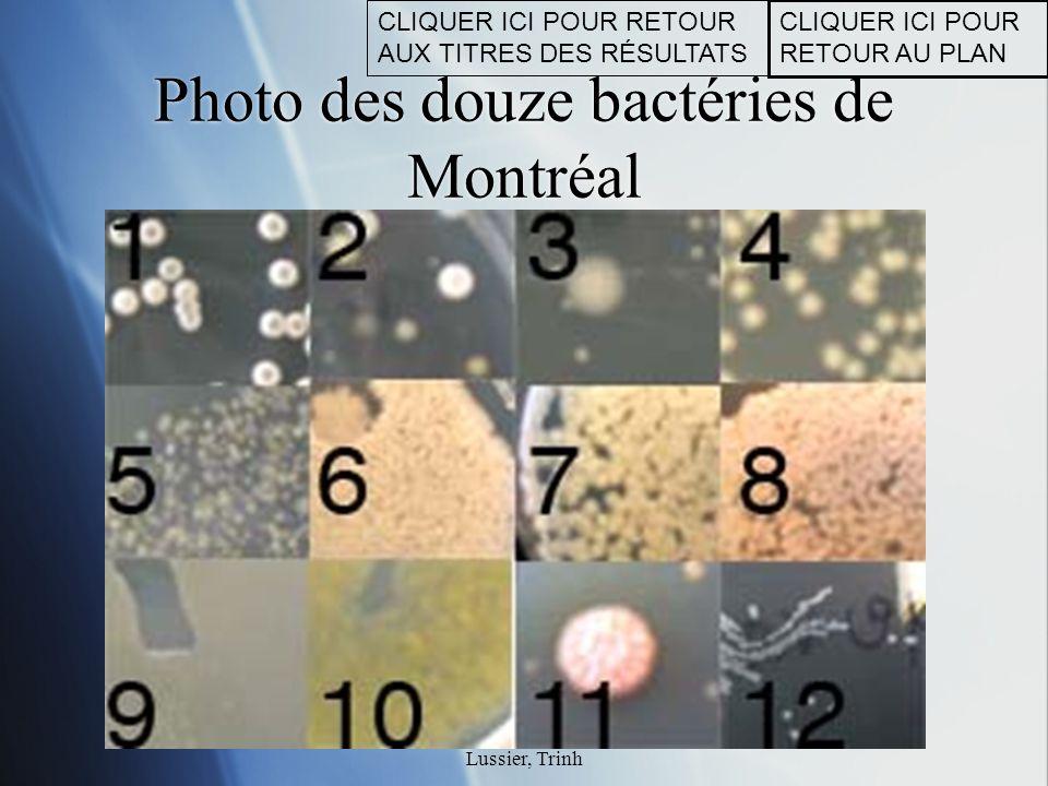 © Copyright Fontaine, Laberge, Lussier, Trinh Photo des douze bactéries de Montréal CLIQUER ICI POUR RETOUR AU PLAN CLIQUER ICI POUR RETOUR AUX TITRES