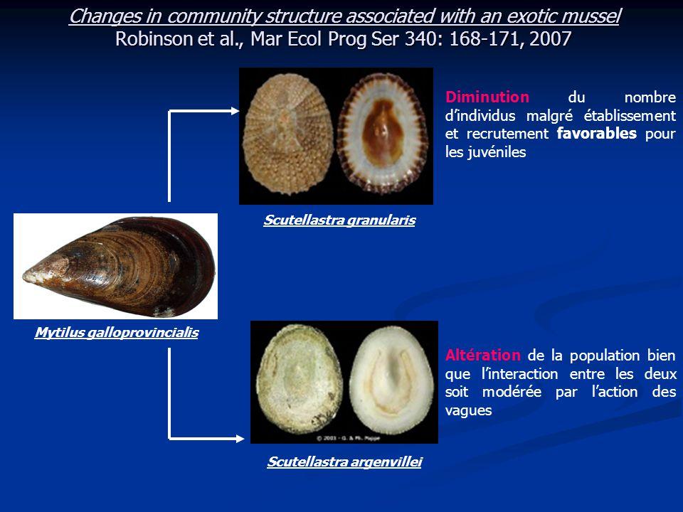 Changes in community structure associated with an exotic mussel Robinson et al., Mar Ecol Prog Ser 340: 168-171, 2007 Matériel et Méthode : Site d'étude : Marcus Island, Saldanha Bay (Afrique du Sud)