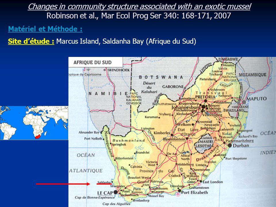 Changes in community structure associated with an exotic mussel Robinson et al., Mar Ecol Prog Ser 340: 168-171, 2007 - Inventaire réalisé en 1980 / inventaire en 2001 après l'arrivée de Mytilus galloprovincialis - En 1980 => 7 zones intertidales identifiées : Porphyra zone Ulva zone Granularis zone Algal turf zone Gigartina zone Aulacomya zone Choromytilus zone => Porphyra capensis => Ulva capensis + Ulva linza => Scutellastra granularis => Caulacantha ustulatus => Gigartina radula + Pterosiphona chlorophylla => Aulacomya ater => Choromytilus meridionalis Ulva capensisUlva linza