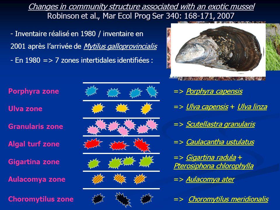 Changes in community structure associated with an exotic mussel Robinson et al., Mar Ecol Prog Ser 340: 168-171, 2007 - En 1980 : 10 à 16 quadrats de 0,01 m² choisis aléatoirement dans chaque zone où le recouvrement en algues ou en moules est de 100 %.