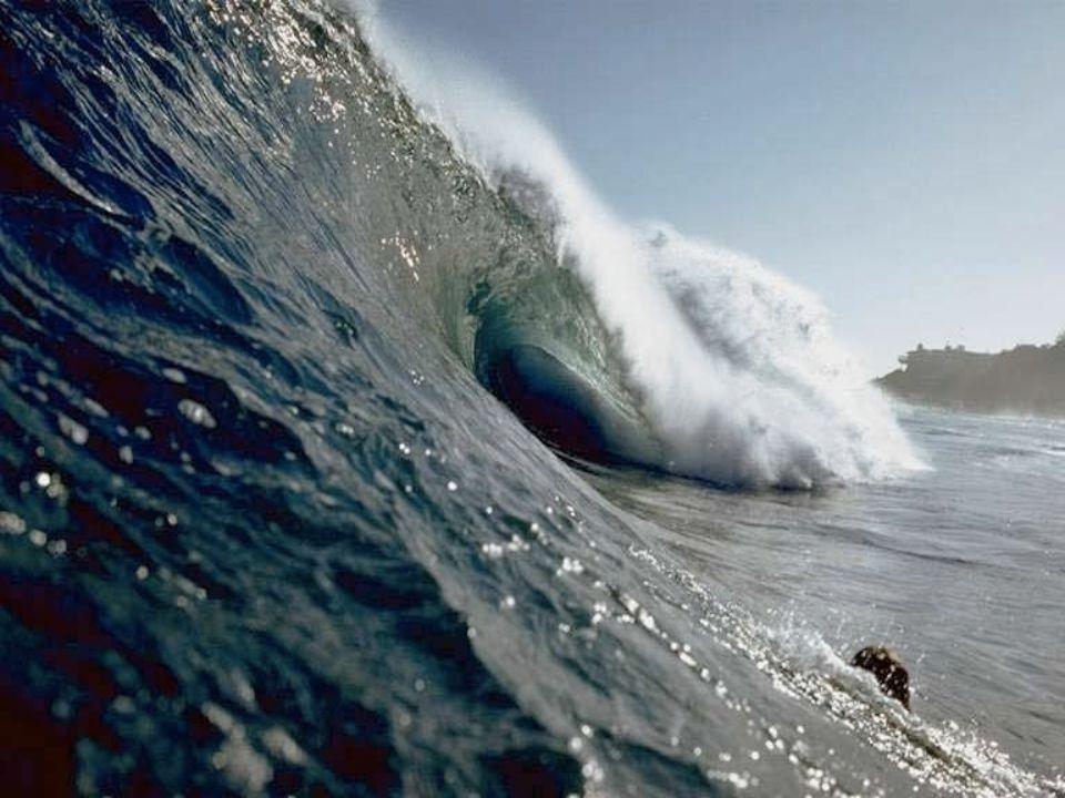 Même les scientifiques imaginent difficilement comment les évènements sismiques sous-marins relativement localisés peuvent produire des vagues gigantesques, tsunami, ( (Tsunami qui en japonais, signifie ) grande vague qui arrive au port ) capables de voyager par le monde pour dévaster des régions à 10 000 Km de distance.