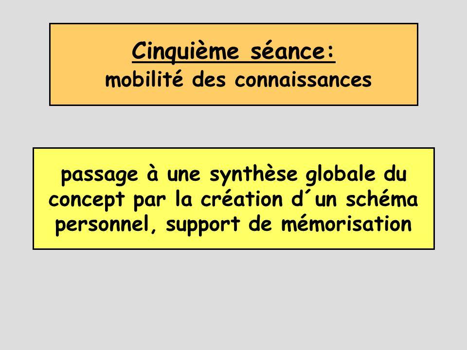 Cinquième séance: mobilité des connaissances passage à une synthèse globale du concept par la création d´un schéma personnel, support de mémorisation
