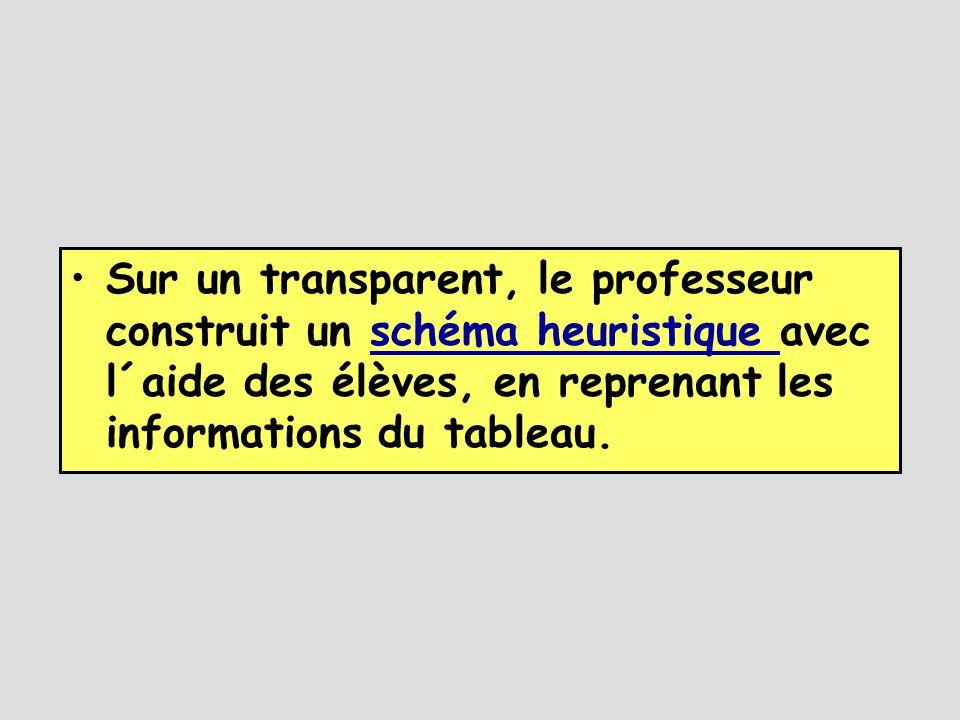 •Sur un transparent, le professeur construit un schéma heuristique avec l´aide des élèves, en reprenant les informations du tableau.schéma heuristique