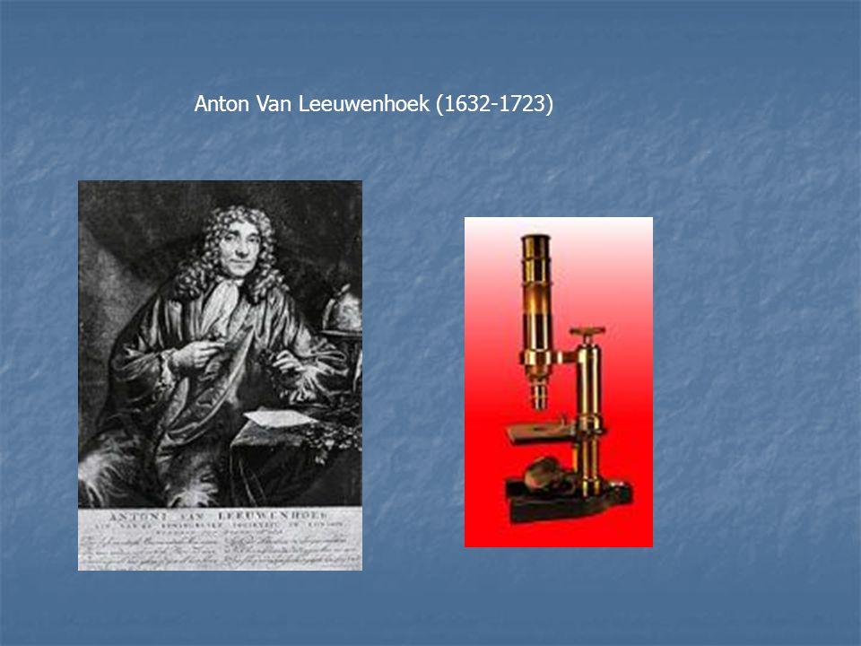 Anton Van Leeuwenhoek (1632-1723)