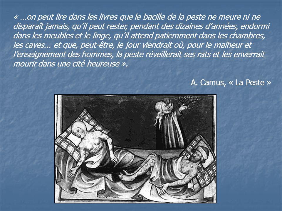 « …on peut lire dans les livres que le bacille de la peste ne meure ni ne disparaît jamais, qu'il peut rester, pendant des dizaines d'années, endormi