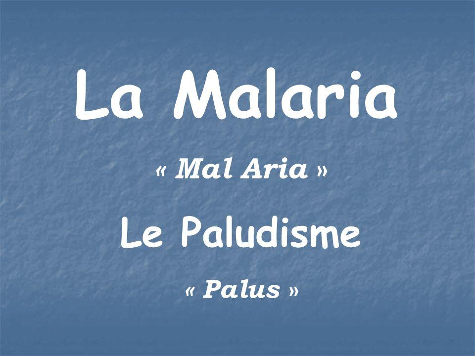 La Malaria « Mal Aria » Le Paludisme « Palus »