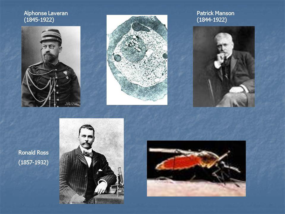 Alphonse Laveran (1845-1922) Patrick Manson (1844-1922) Ronald Ross (1857-1932)