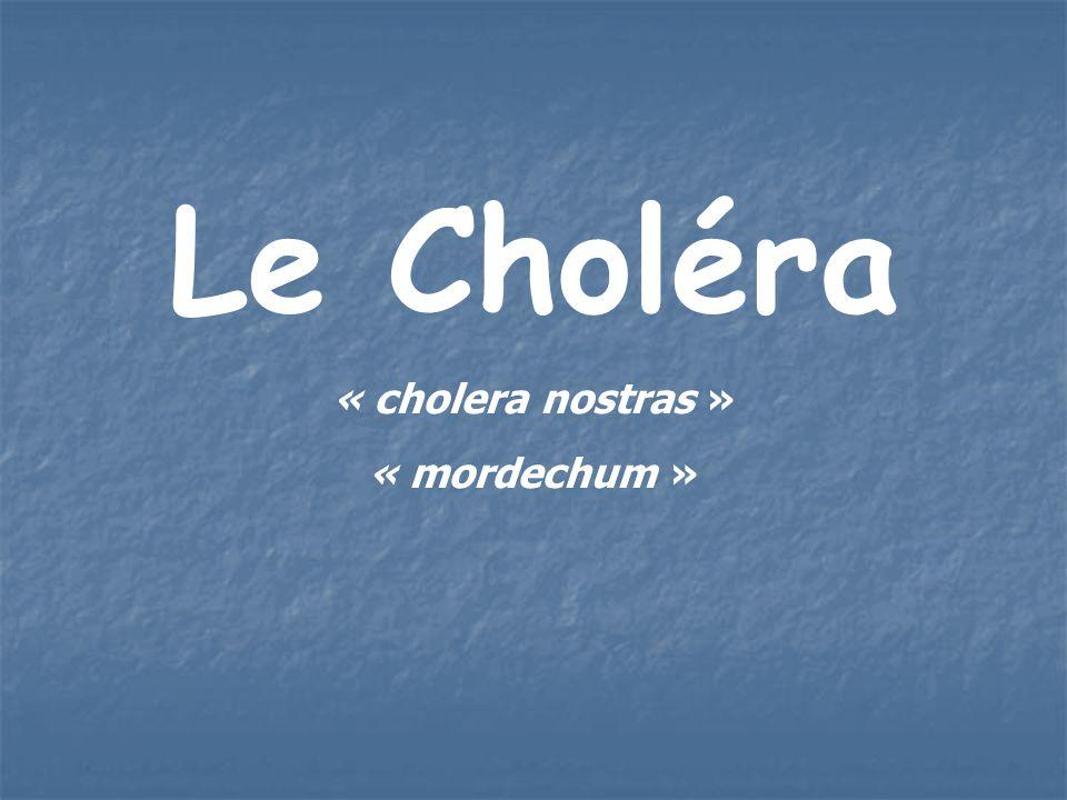 Le Choléra « cholera nostras » « mordechum »