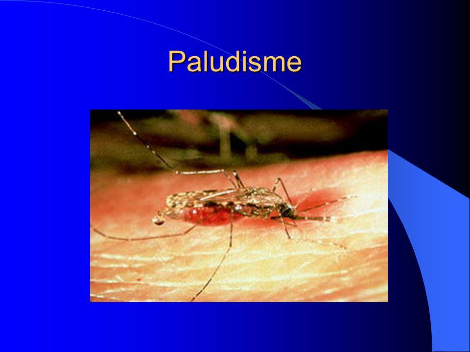 Paludisme: Introduction Cas importés de malaria en Europe