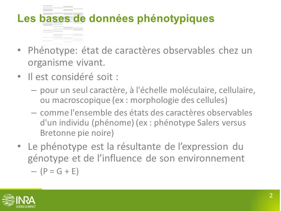 2 Les bases de données phénotypiques • Phénotype: état de caractères observables chez un organisme vivant. • Il est considéré soit : – pour un seul ca