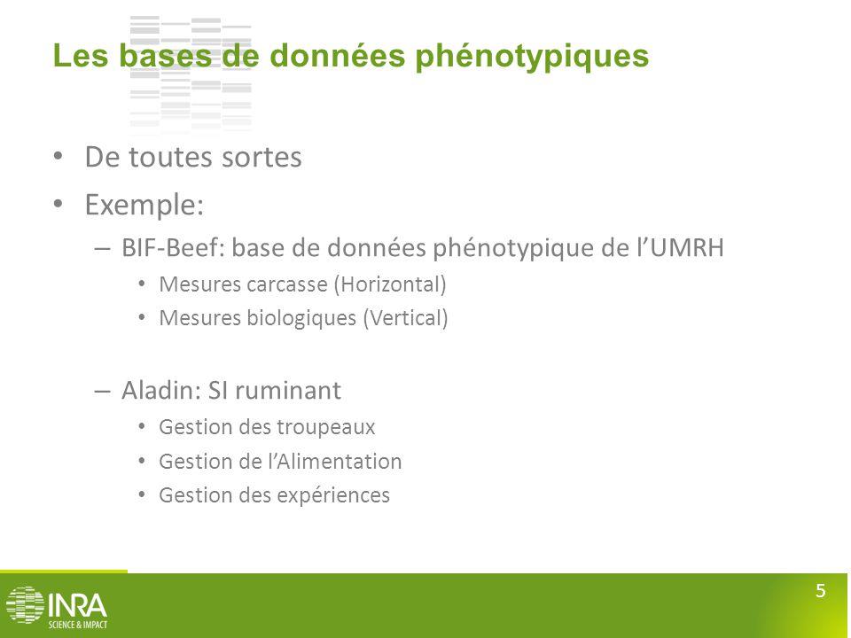 5 Les bases de données phénotypiques • De toutes sortes • Exemple: – BIF-Beef: base de données phénotypique de l'UMRH • Mesures carcasse (Horizontal)
