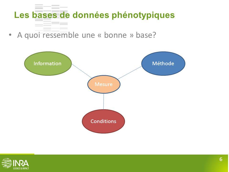 6 Les bases de données phénotypiques • A quoi ressemble une « bonne » base? InformationMéthode Conditions Mesure
