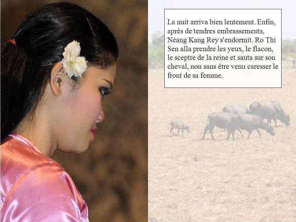 Il n'y avait dans le pavillon qu'un vase où Ro Thi Sen put compter vingt-trois yeux. A côté était un flacon de jade rouge et un manuscrit qui indiquai