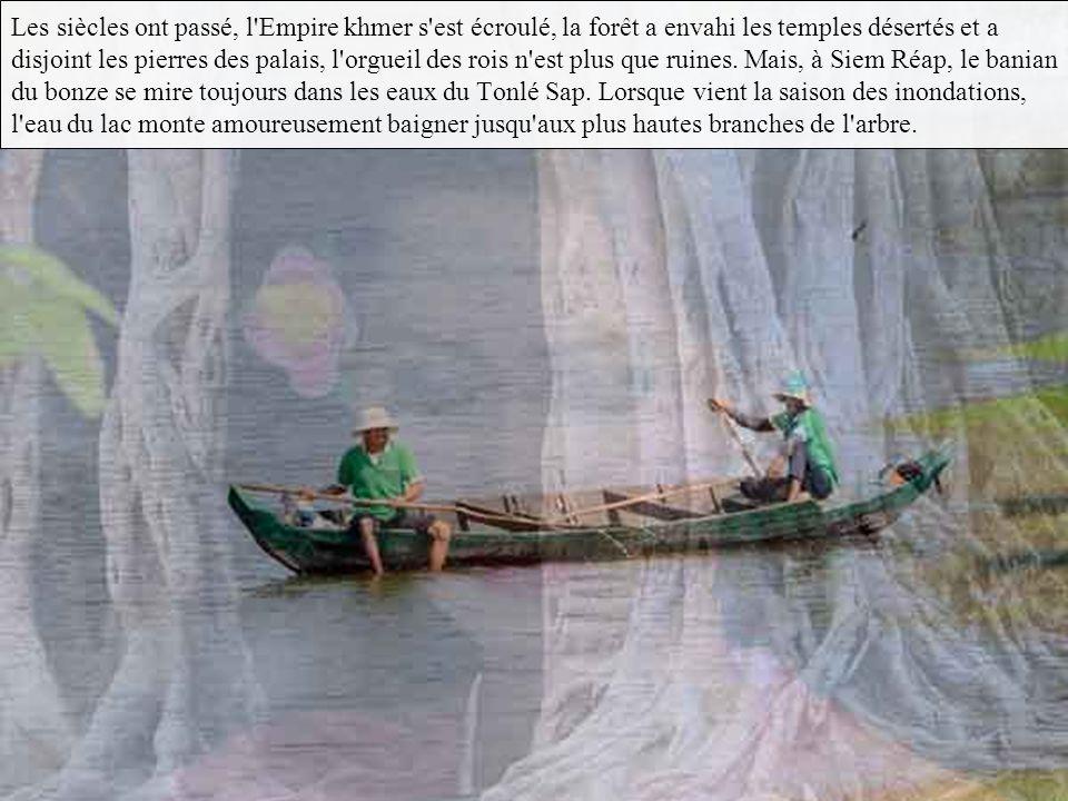 …tandis que l'âme du bonze Ro Thi Sen s'incarnait dans un banian.
