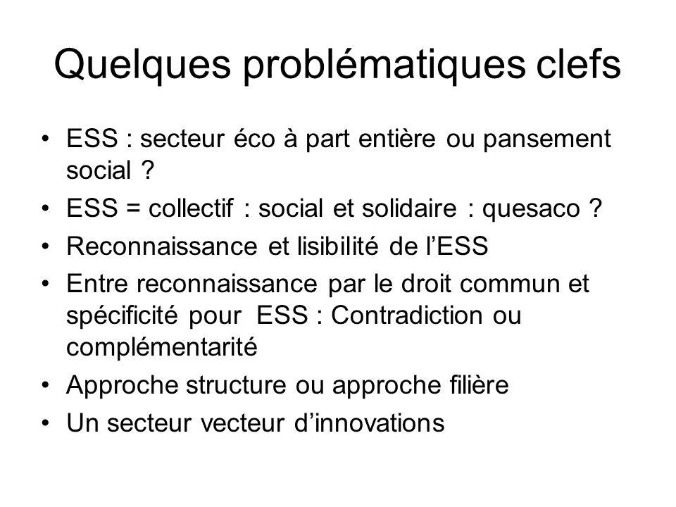 Quelques problématiques clefs •ESS : secteur éco à part entière ou pansement social .