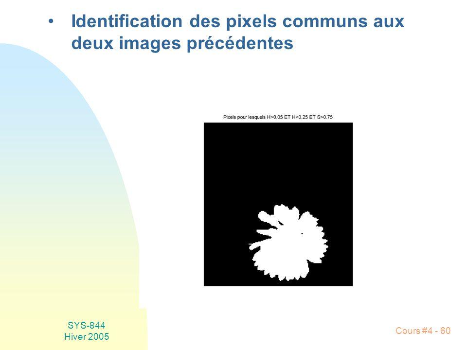 SYS-844 Hiver 2005 Cours #4 - 60 •Identification des pixels communs aux deux images précédentes