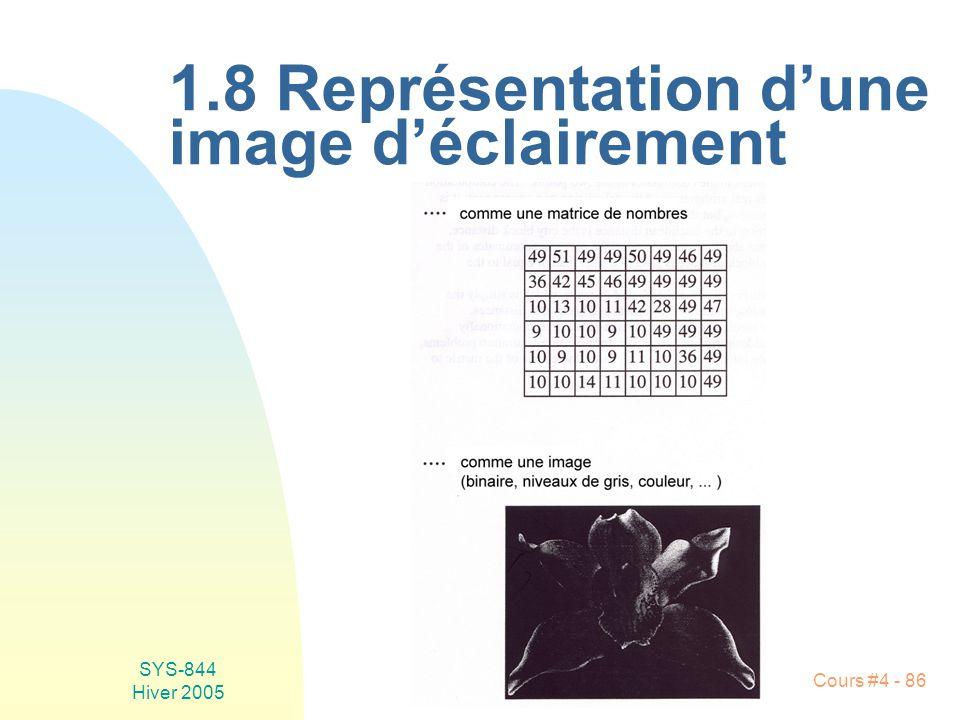 SYS-844 Hiver 2005 Cours #4 - 86 1.8 Représentation d'une image d'éclairement