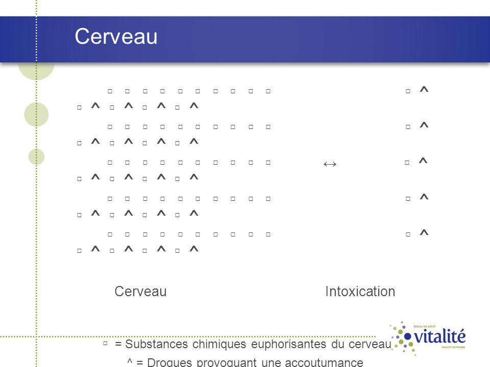 Cerveau ▫ ▫ ▫ ▫ ▫ ▫ ▫ ▫ ▫ ▫ ▫ ^ ▫ ^ ▫ ^ ▫ ^ ▫ ^ ▫ ▫ ▫ ▫ ▫ ▫ ▫ ▫ ▫ ▫ ↔ ▫ ^ ▫ ^ ▫ ^ ▫ ^ ▫ ^ ▫ ▫ ▫ ▫ ▫ ▫ ▫ ▫ ▫ ▫ ▫ ^ ▫ ^ ▫ ^ ▫ ^ ▫ ^ Cerveau Intoxication