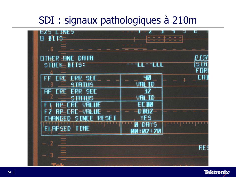 54 SDI : signaux pathologiques à 210m