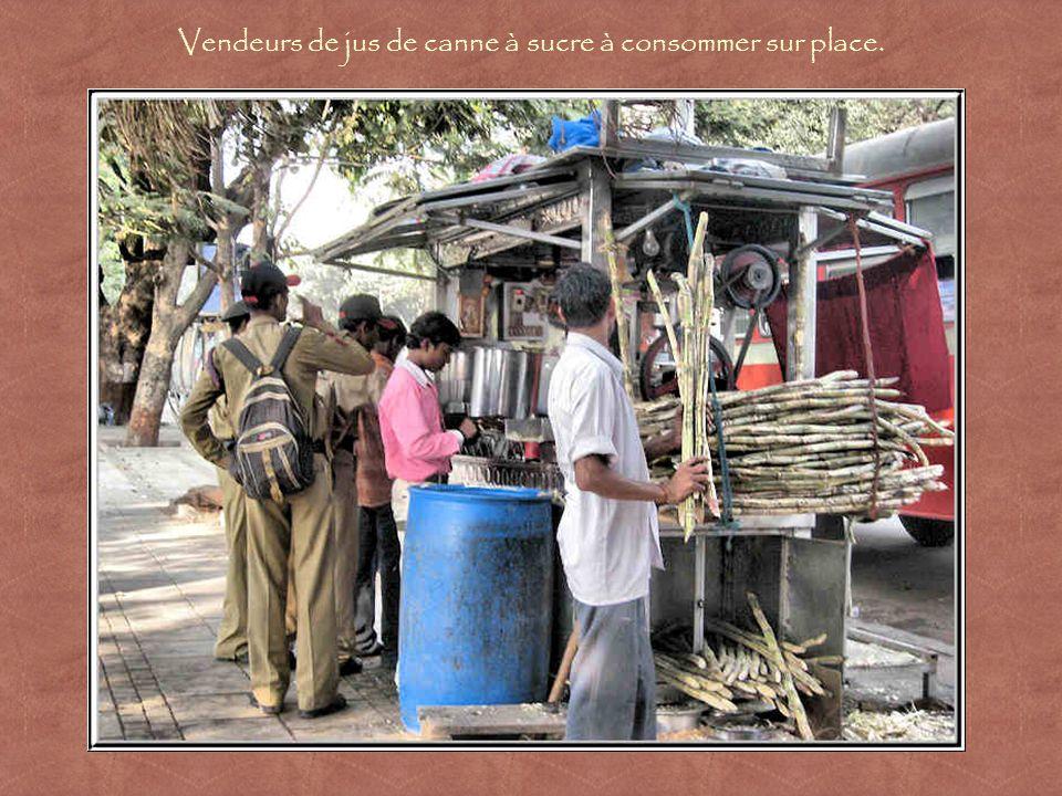 Des cuisiniers préparent des plats végétariens.