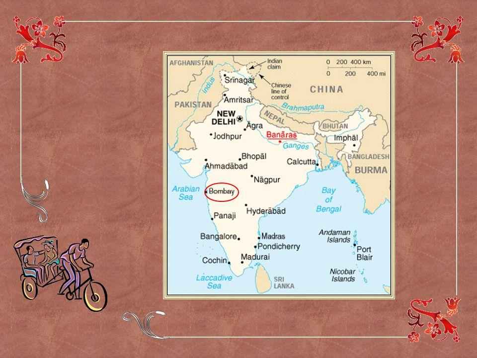 Ce diaporama vous fera découvrir des images de la vie indienne authentique.