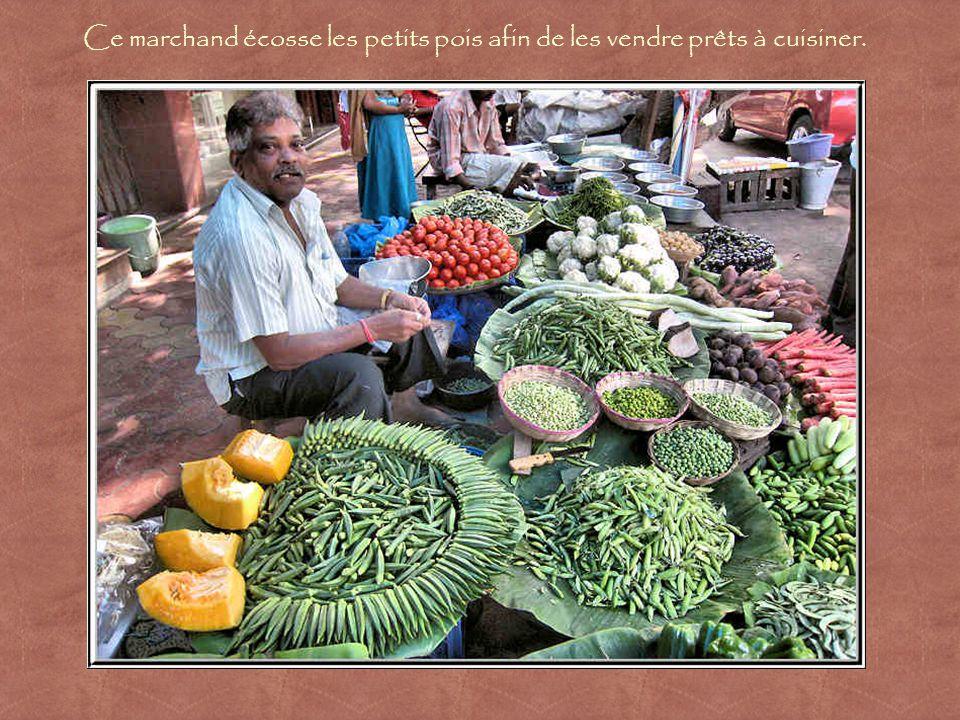 Marchands de légumes dont les produits sont artistiquement exposés.