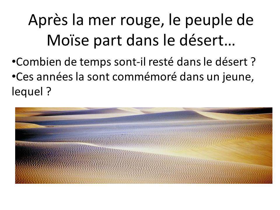 Après la mer rouge, le peuple de Moïse part dans le désert… • Combien de temps sont-il resté dans le désert .