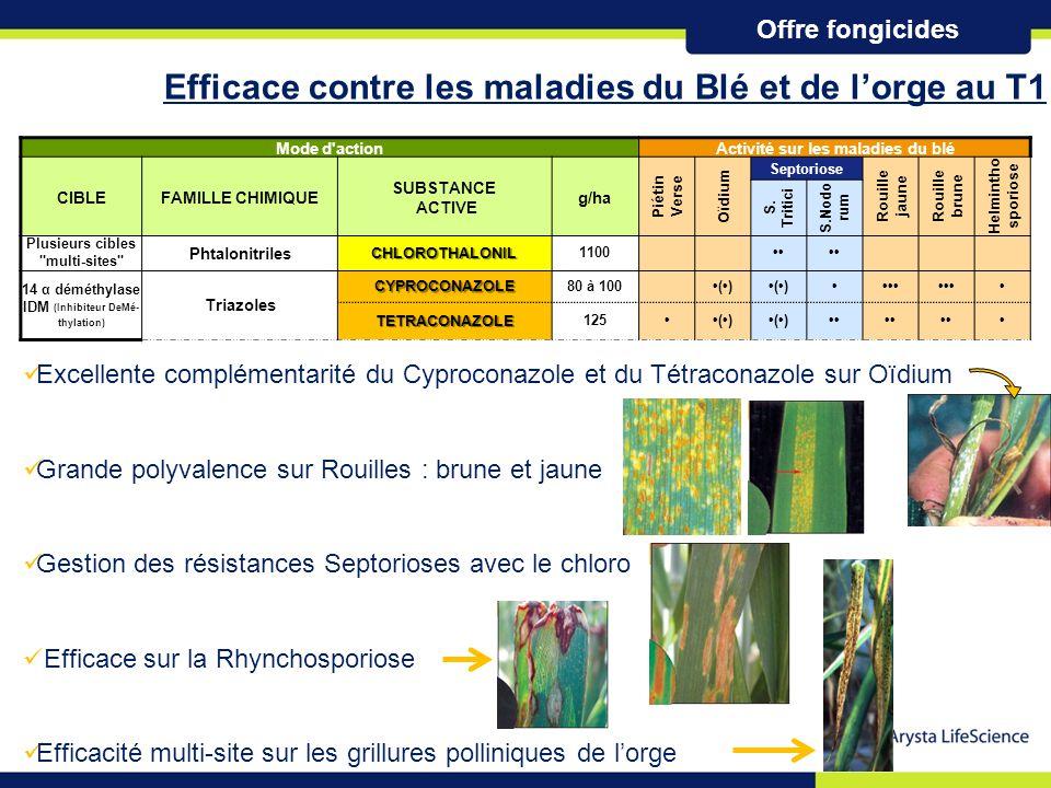 La haute définition de la protection du blé et de l'orge au T1 La haute définition de la protection du blé et de l'orge au T1 Du stade épi à 1 cm (30) à la dernière feuille (37)..43 l/ha : 1.43 l/ha  Cyproconazole 40 g/l effet raccourcisseur, septorioses, rouille, oïdium  Chlorothalonil 375 g/l septorioses résistantes 0.71 l/ha : 0.71 l/ha  Tetraconazole 125 g/l oïdium, septorioses, rouille brune Positionnement 5