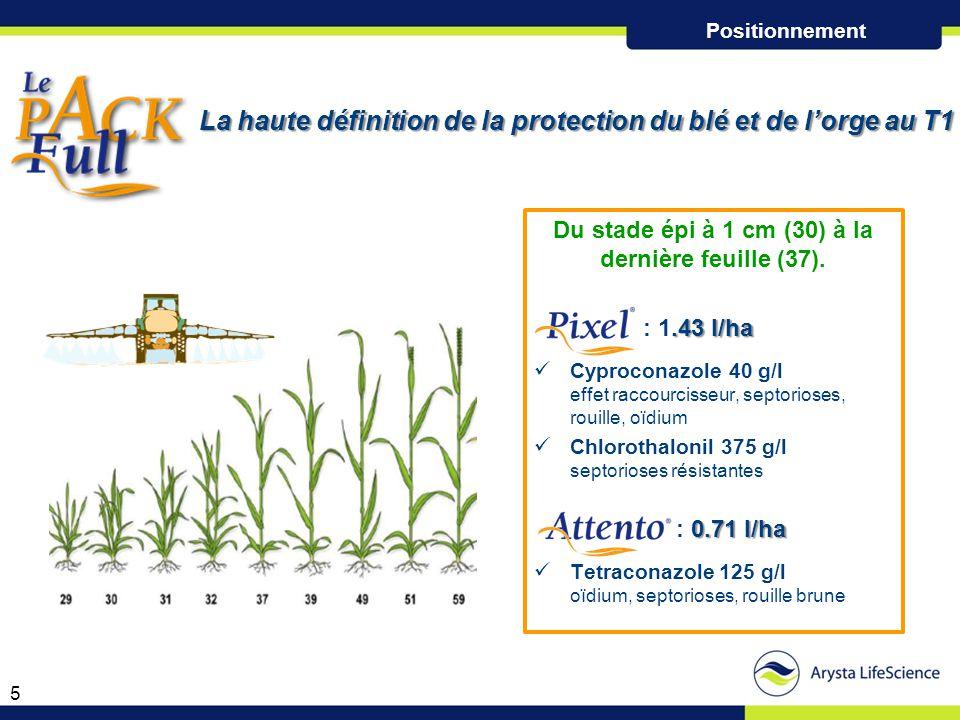 La haute définition de la protection du blé et de l'orge au T1 La haute définition de la protection du blé et de l'orge au T1 Du stade épi à 1 cm (30)